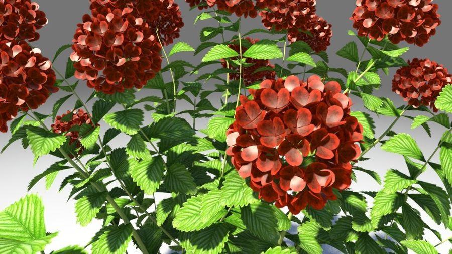 Красный цветок royalty-free 3d model - Preview no. 5