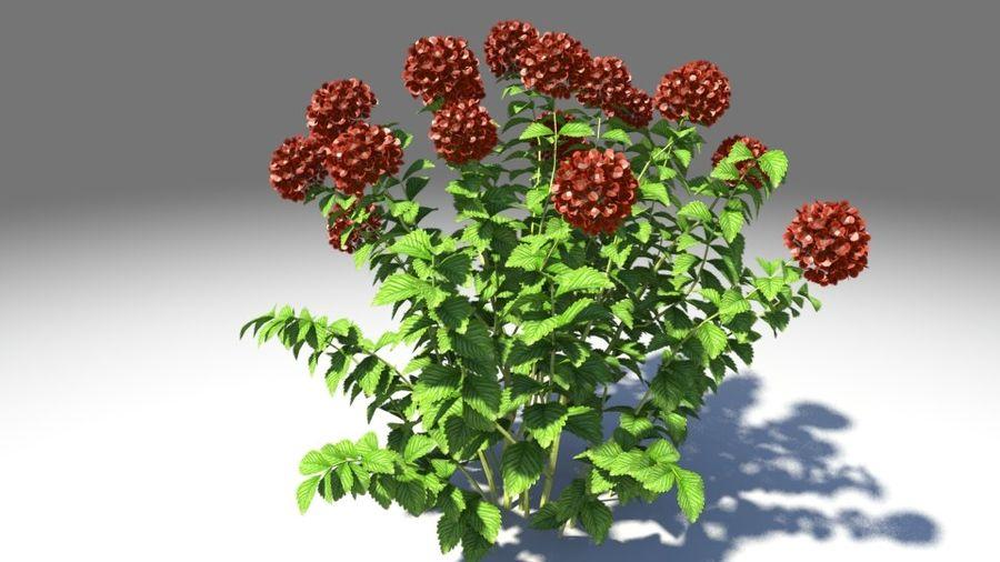 Красный цветок royalty-free 3d model - Preview no. 3