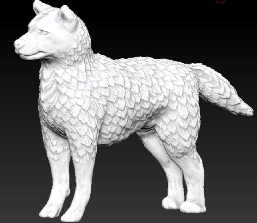 cane lupo royalty-free 3d model - Preview no. 1