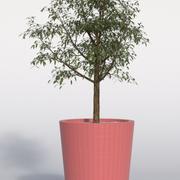 Planta exterior 6 modelo 3d
