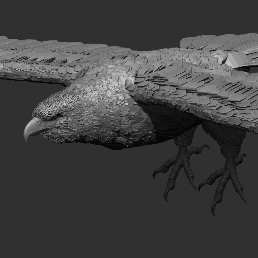 eagle  model royalty-free 3d model - Preview no. 3