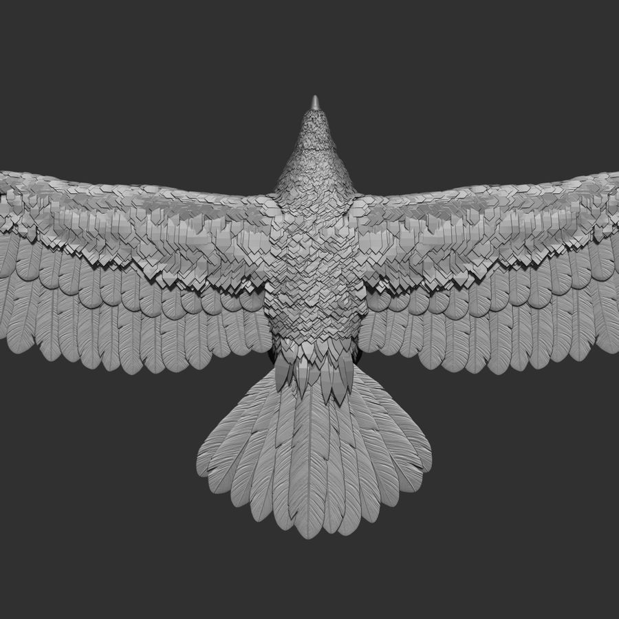 eagle  model royalty-free 3d model - Preview no. 5