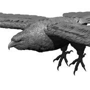 модель орла 3d model