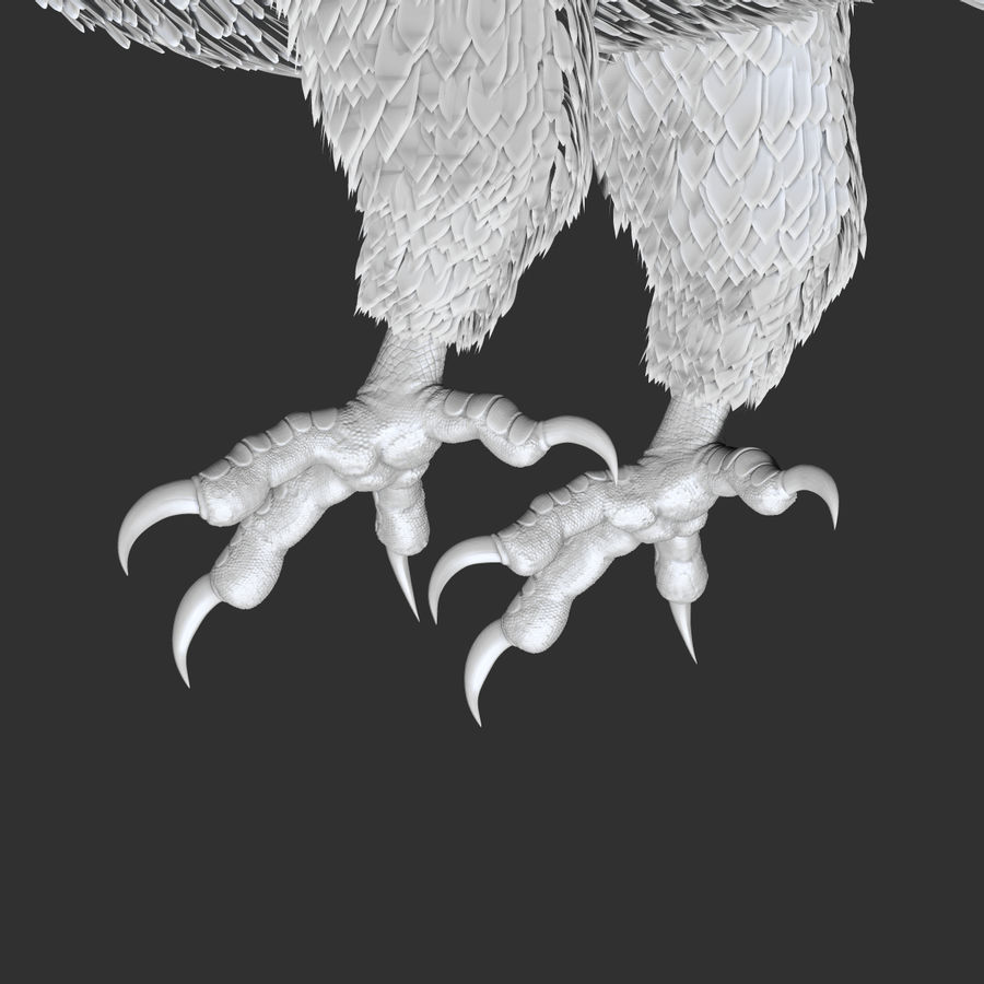 eagle  model royalty-free 3d model - Preview no. 11