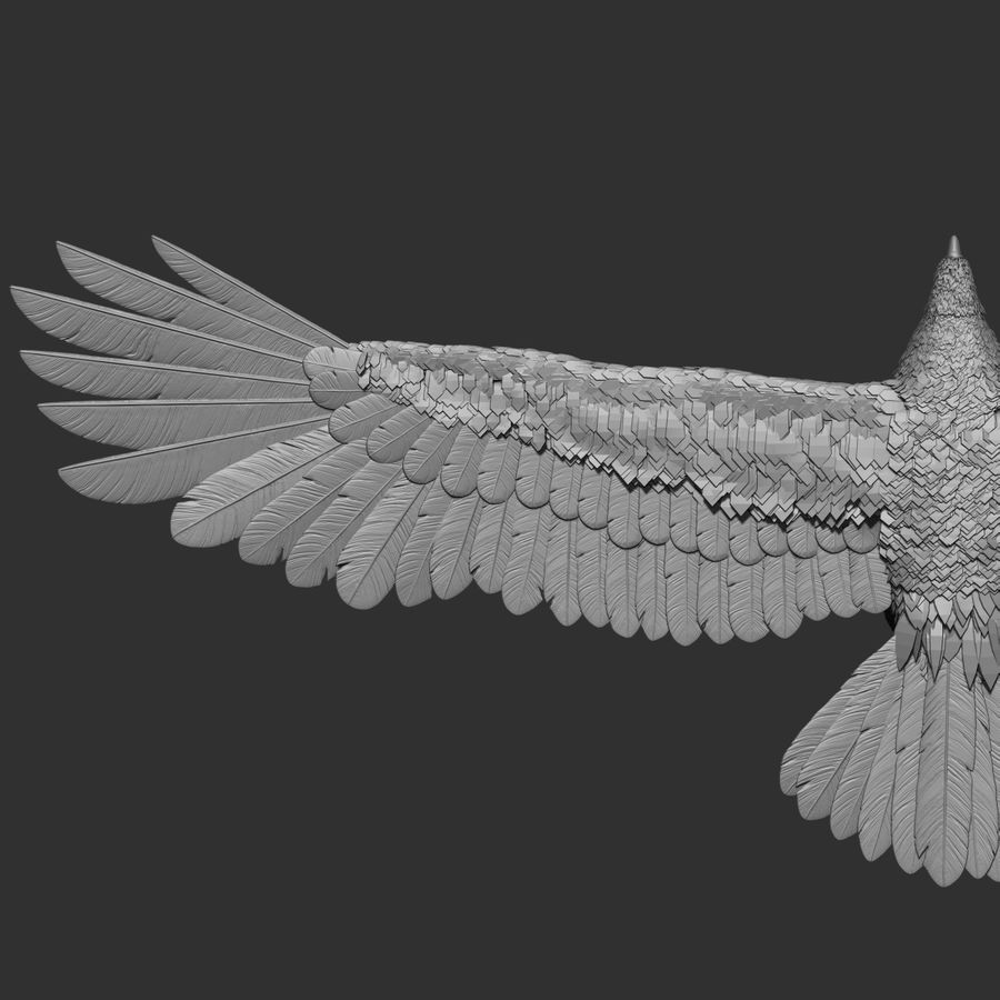 eagle  model royalty-free 3d model - Preview no. 6