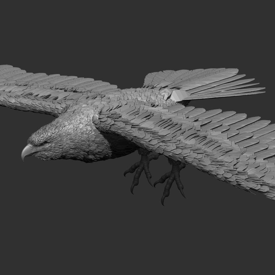 eagle  model royalty-free 3d model - Preview no. 8