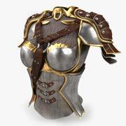 Armatura femminile 3d model