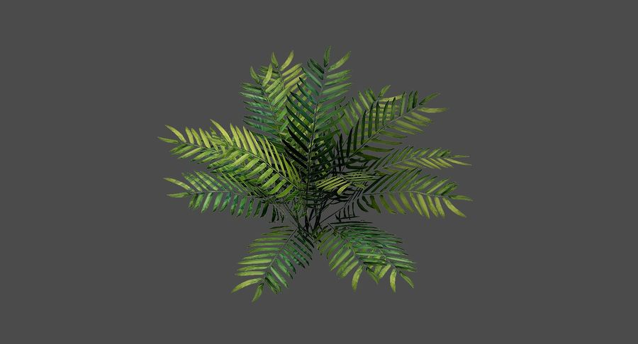 Cartoon Bush 01 royalty-free 3d model - Preview no. 8