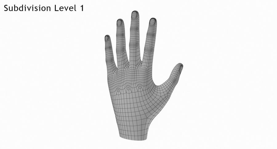 Hand royalty-free 3d model - Preview no. 5
