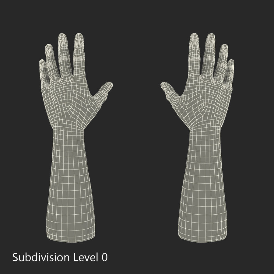 アフリカ人の手3Dモデル royalty-free 3d model - Preview no. 11