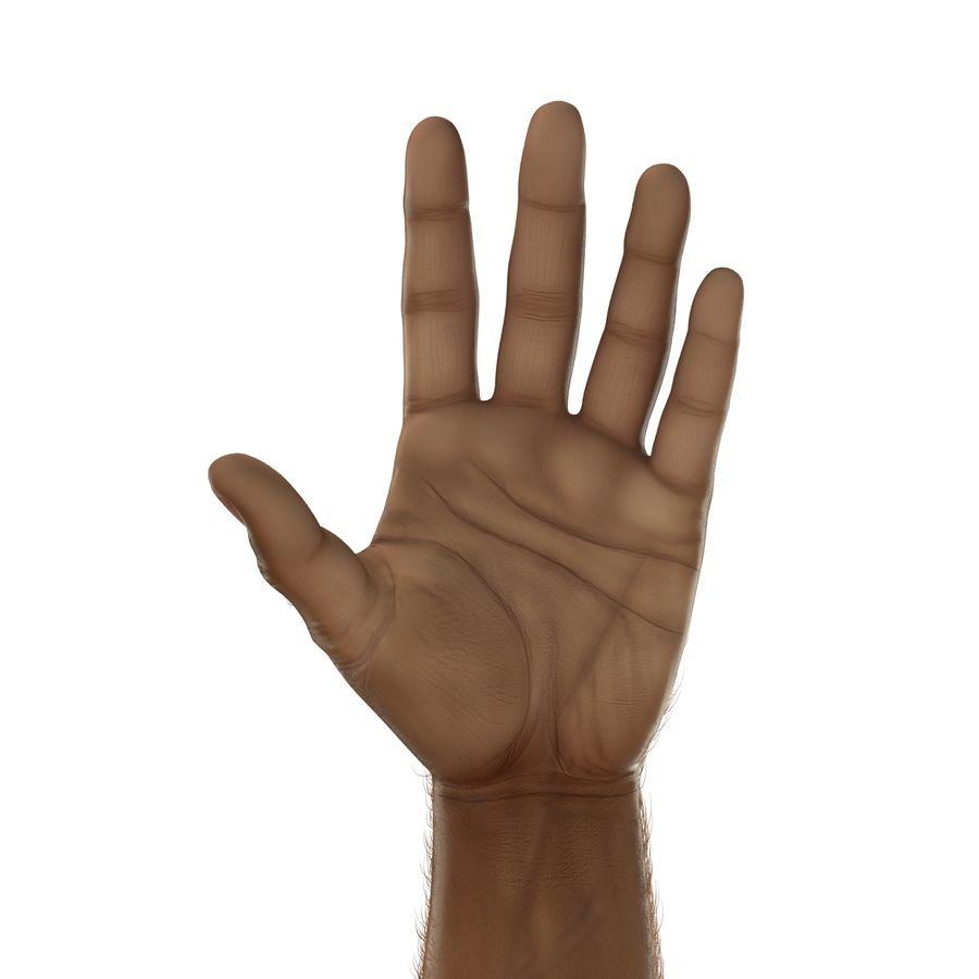 アフリカ人の手3の毛皮3Dモデル royalty-free 3d model - Preview no. 14