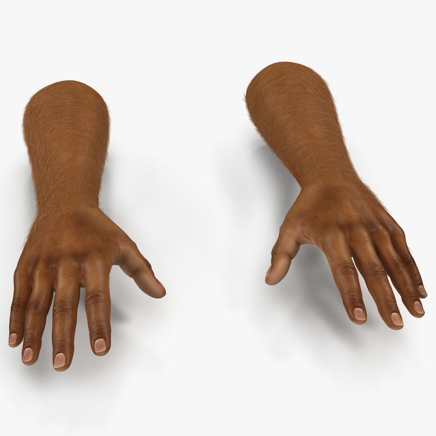 アフリカ人の手3の毛皮3Dモデル royalty-free 3d model - Preview no. 1