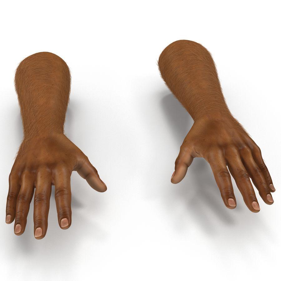 アフリカ人の手3の毛皮3Dモデル royalty-free 3d model - Preview no. 2