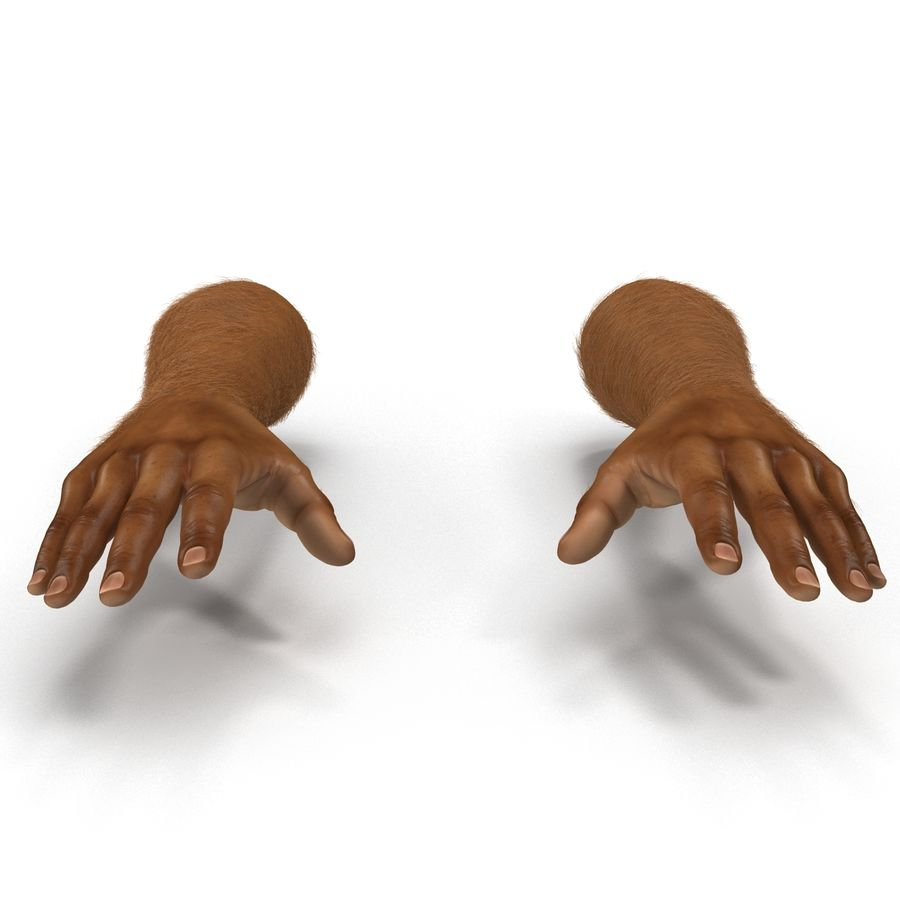 アフリカ人の手3の毛皮3Dモデル royalty-free 3d model - Preview no. 7