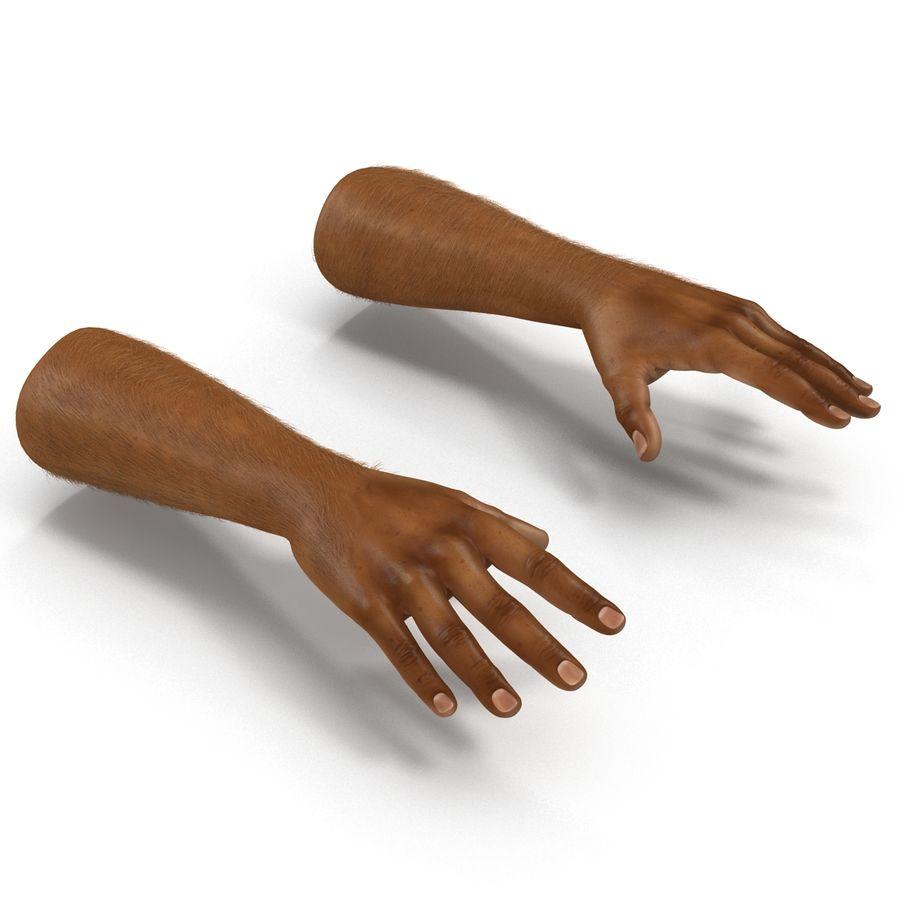 アフリカ人の手3の毛皮3Dモデル royalty-free 3d model - Preview no. 6
