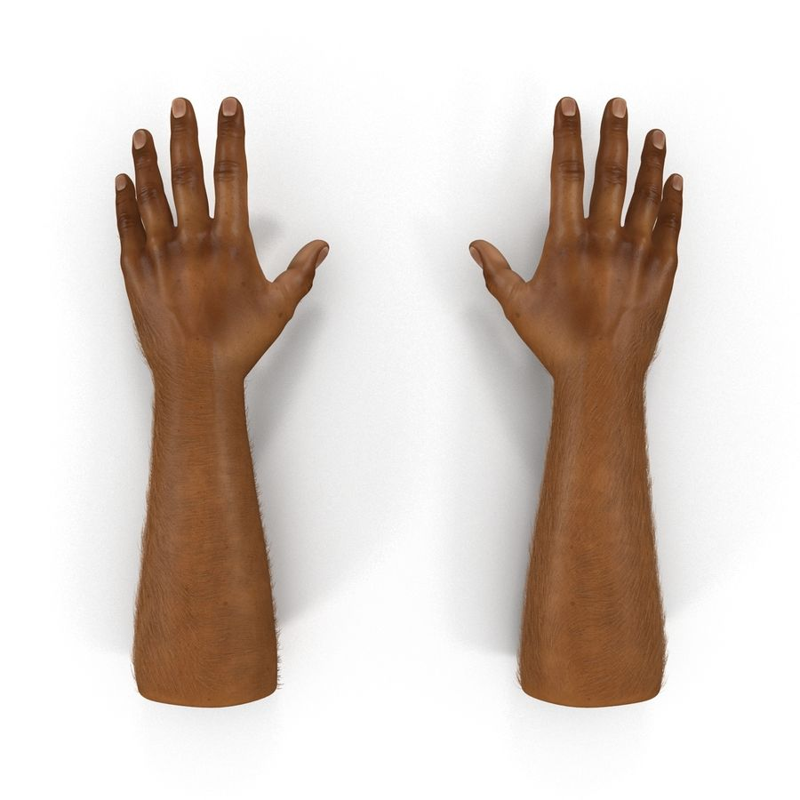 アフリカ人の手3の毛皮3Dモデル royalty-free 3d model - Preview no. 3