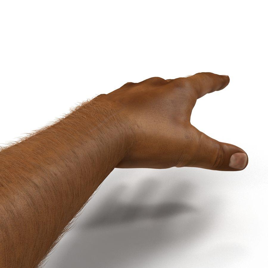 アフリカ人の手3の毛皮3Dモデル royalty-free 3d model - Preview no. 11