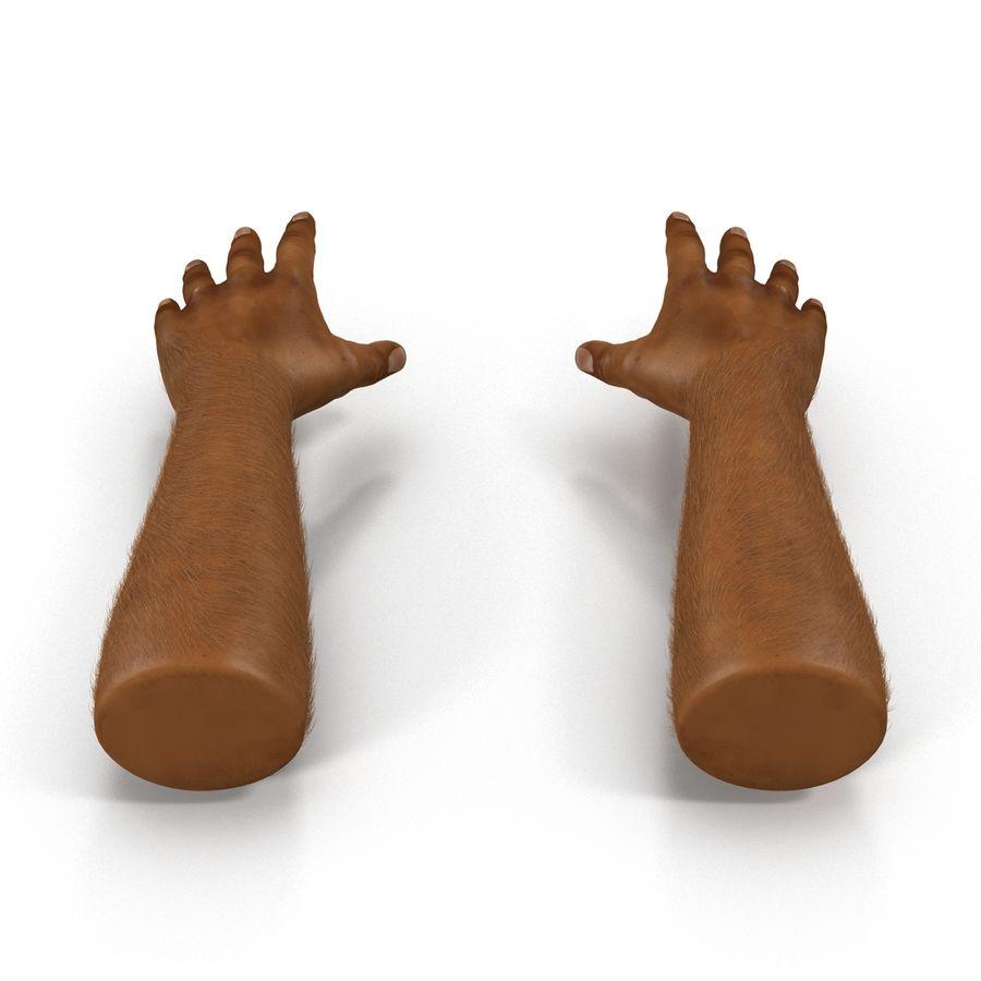 アフリカ人の手3の毛皮3Dモデル royalty-free 3d model - Preview no. 4