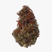 Marijuana Bud 02 03 3d model