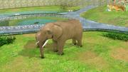 動物園 3d model