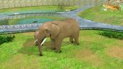 Zoologischer Park 3d model