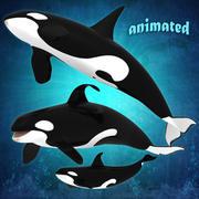 killer whale pack 3d model