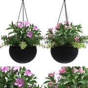 Plant Hanging Basket 3d model