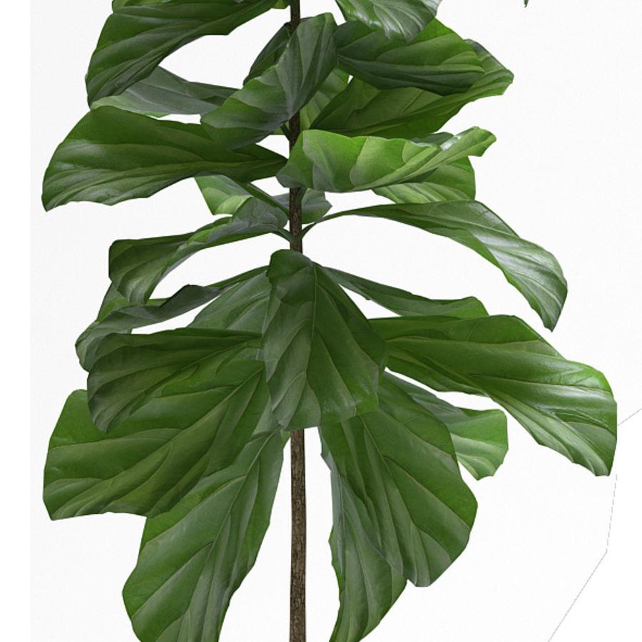PLANTES PLANTES royalty-free 3d model - Preview no. 4