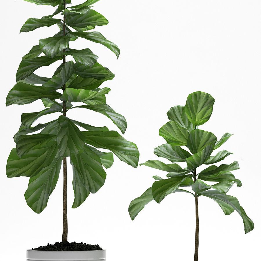 PLANTES PLANTES royalty-free 3d model - Preview no. 2