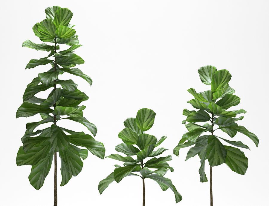 PLANTES PLANTES royalty-free 3d model - Preview no. 5