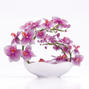 орхидея 3 3d model