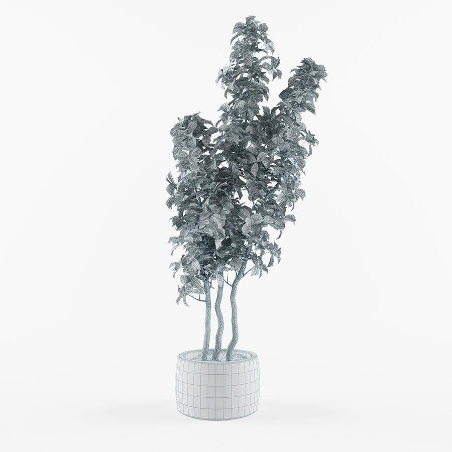 Doniczka na rośliny doniczkowe royalty-free 3d model - Preview no. 4