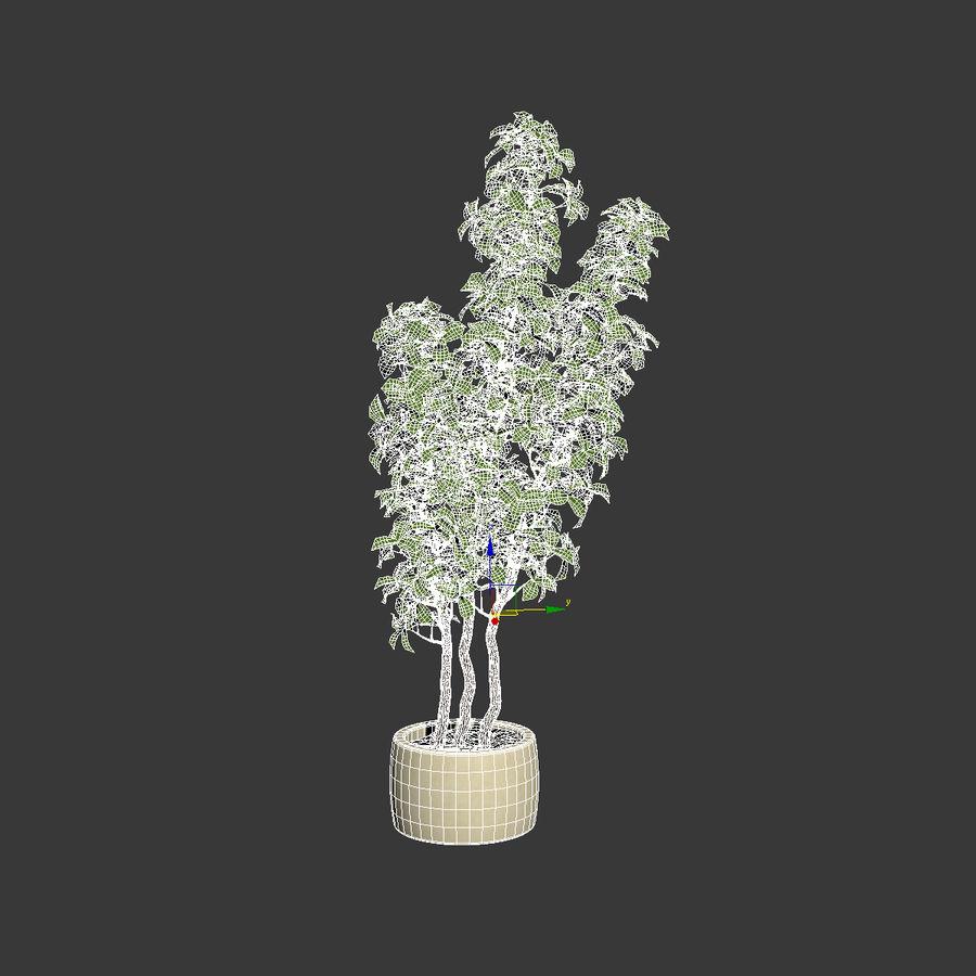 Doniczka na rośliny doniczkowe royalty-free 3d model - Preview no. 7