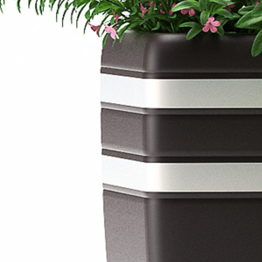 rośliny rośliny kwitnące royalty-free 3d model - Preview no. 3