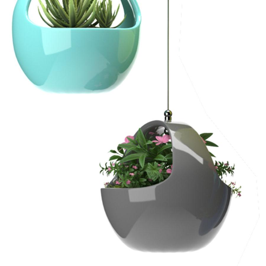 Rośliny Wiszące rośliny royalty-free 3d model - Preview no. 3