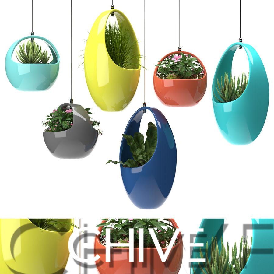 Rośliny Wiszące rośliny royalty-free 3d model - Preview no. 1
