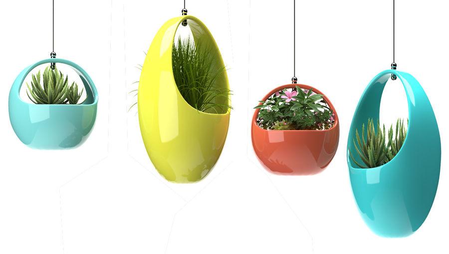 Rośliny Wiszące rośliny royalty-free 3d model - Preview no. 4