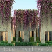 Bougainvillea 2 3d model