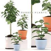 植物ゴム工場 3d model