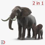 Elephants Collection 2 3d model