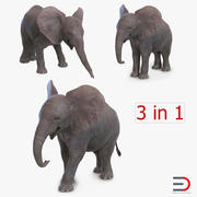 Baby Elephants Collection 3d model