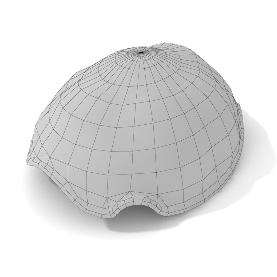 kaplumbağa kabuğu royalty-free 3d model - Preview no. 5