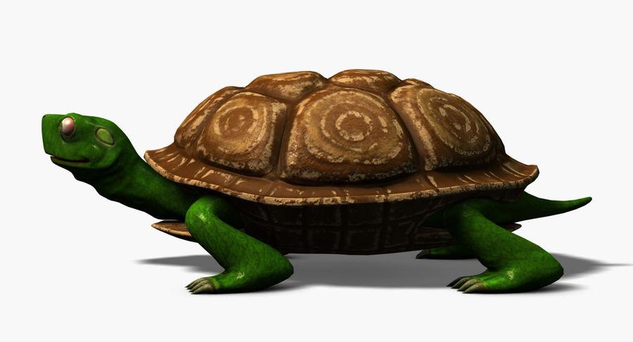 Karikatür kaplumbağa royalty-free 3d model - Preview no. 4