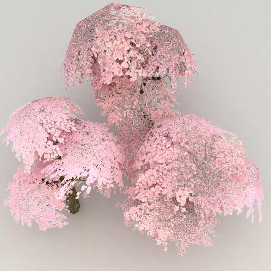 Ensemble d'arbres Sakura Lowpoly royalty-free 3d model - Preview no. 5