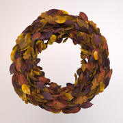 Wreath Autumn 3d model