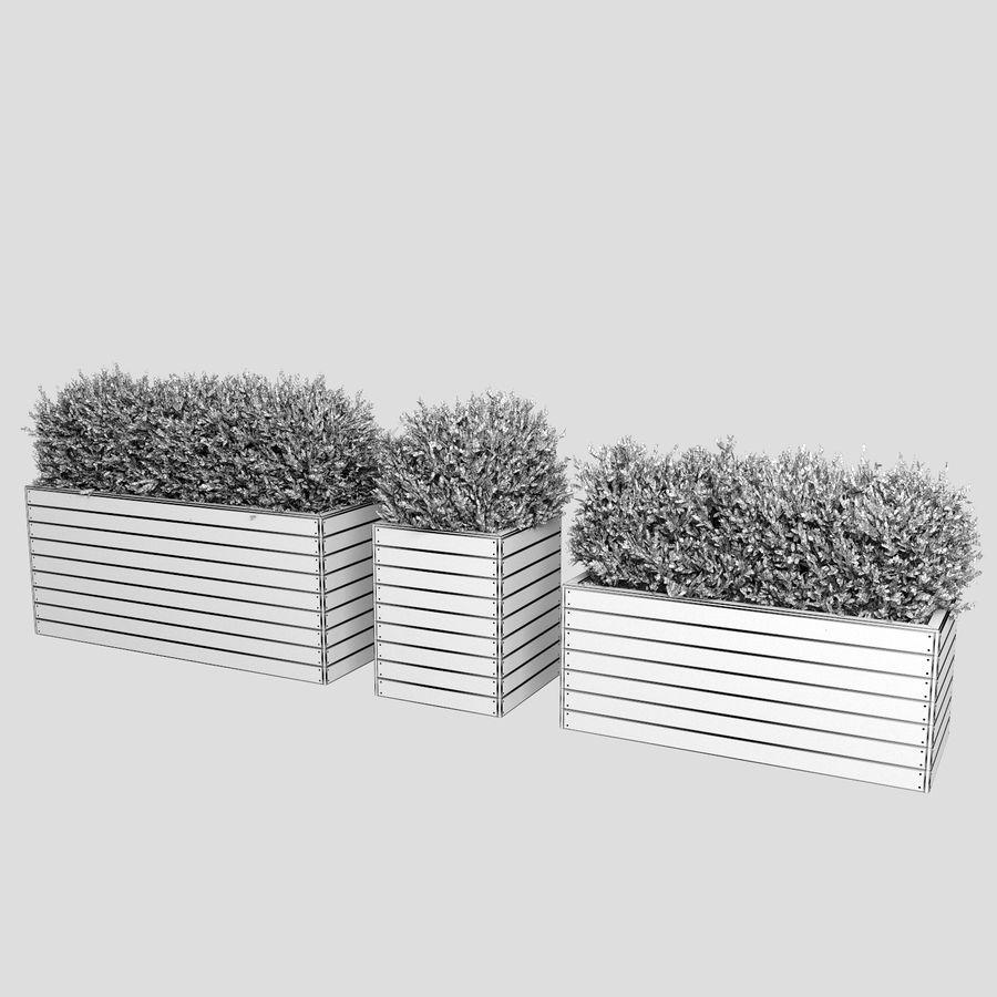 Sebes em plantadores de madeira royalty-free 3d model - Preview no. 13