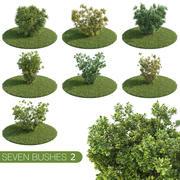 Sieben Büsche 2 3d model
