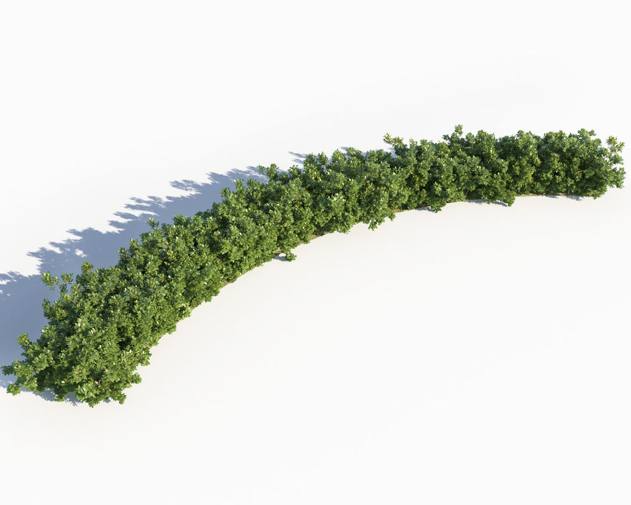 Scatterable Shrubs royalty-free 3d model - Preview no. 5