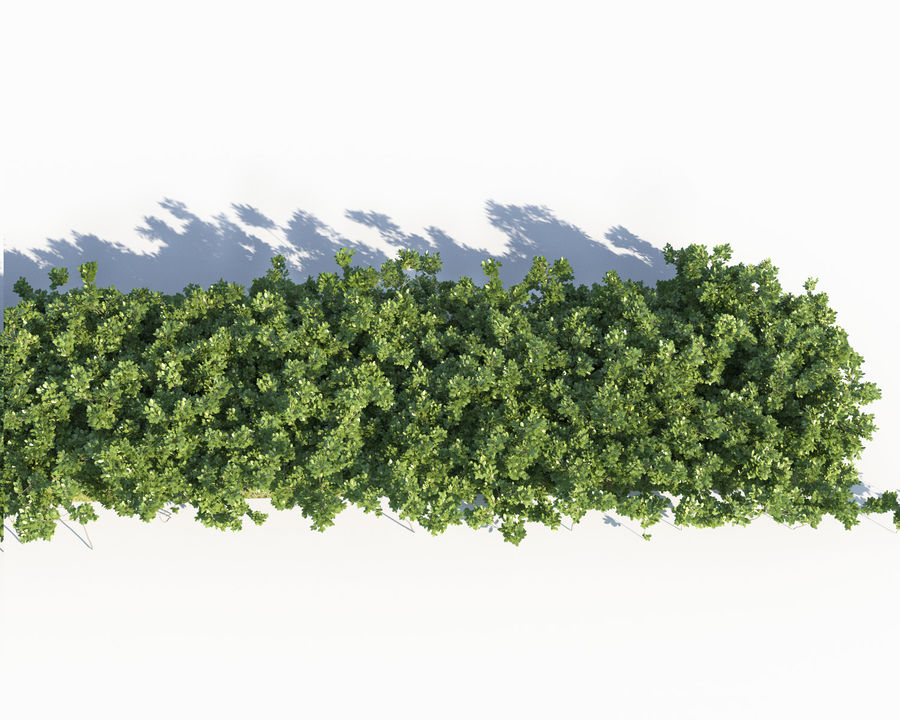 Scatterable Shrubs royalty-free 3d model - Preview no. 4