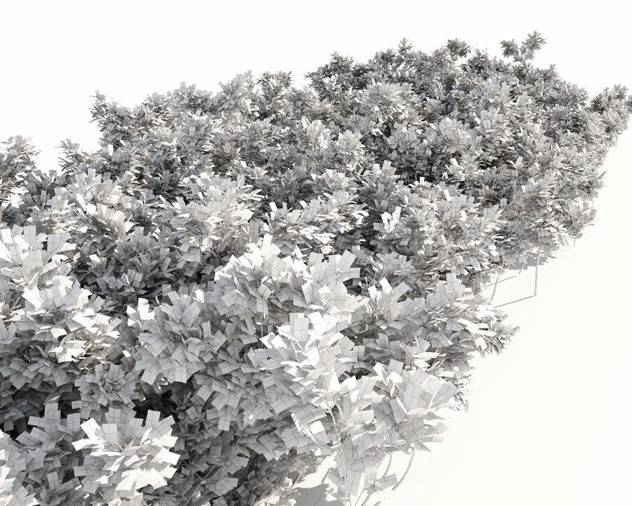 Scatterable Shrubs royalty-free 3d model - Preview no. 15